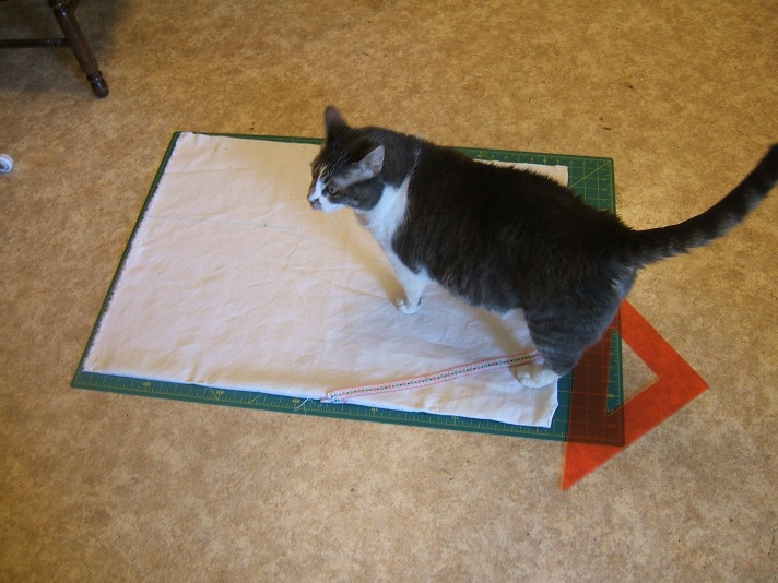 cat on cutting mat